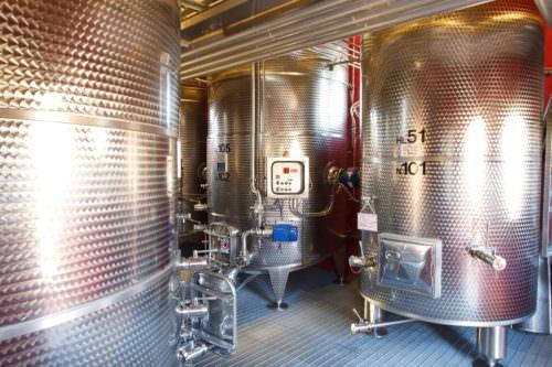 Gärung von Wein im Edelstahltank - Vino Culinario