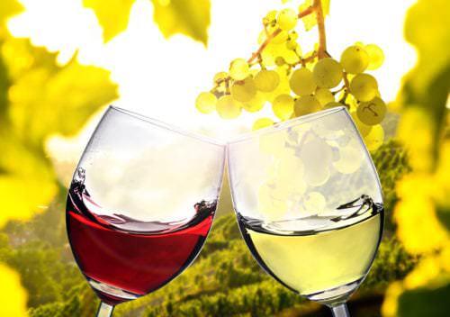 Gläser mit Rotwein und Weißwein