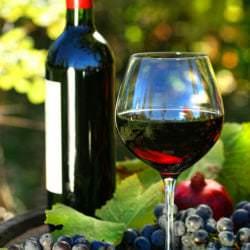 Rote Rebsorten wie bspw. der Gaglioppo dominieren den Weinbau in Kalabrien - Vino Culinario