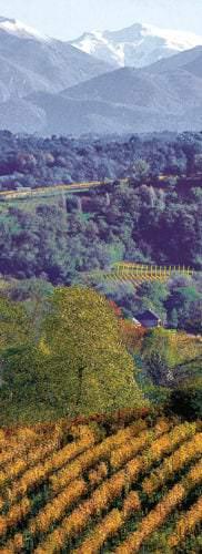 Weinbauregion Sud-Ouest (Südwesten) in Frankreich - Vino Culinario