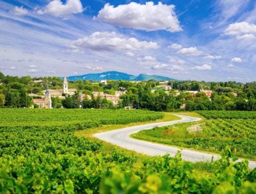 Weinberge vor einer kleinen Stadt in Frankreich - Vino Culinario