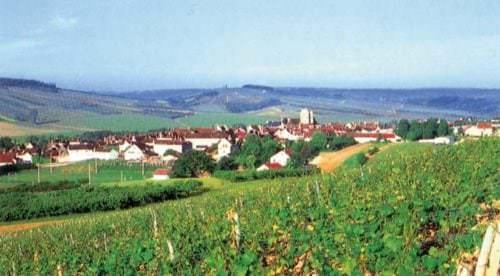 Blick auf die Weinberge und Weinlandschaft im Burgund - Vino Culinario