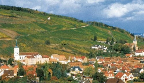 Die Weinbauregion Elsass in Frankreich - Vino Culinario
