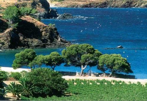 Außergewöhnliche Lage an der Mittelmeerküste - Vino Culinario