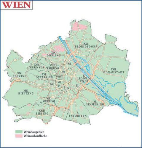 Wien - Weinanbaugebiet in Österreich - Vino Culinario