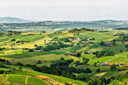 Blick auf die Weinberge und Weinlandschaft der Beaujolais - Vino Culinario