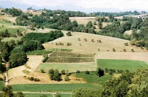 Das französische Weinbaugebiet Sud-Ouest - Vino Culinario