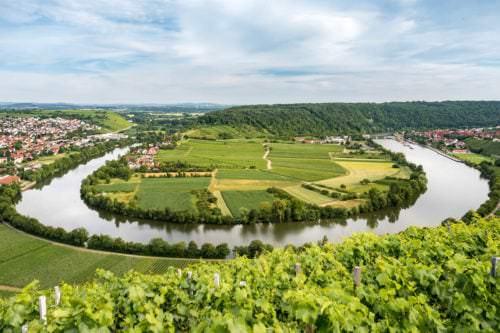 Die Weinregion an der Neckarschleife bei Mundelsheim - Vino Culinario